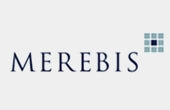 Aura Consulting professional references: Merebis